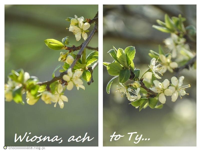 Zapachniało, zajaśniało, wiosna, ach to ty...