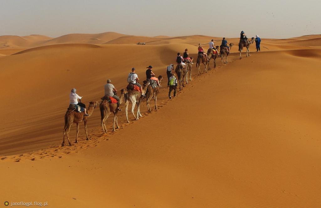 Sahara dla Ciebie Marcinie w rewanżu