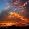 Wstaje wiosenny dzień  :: Miłego oraz pogodnego dni<br />a dla miłych gości